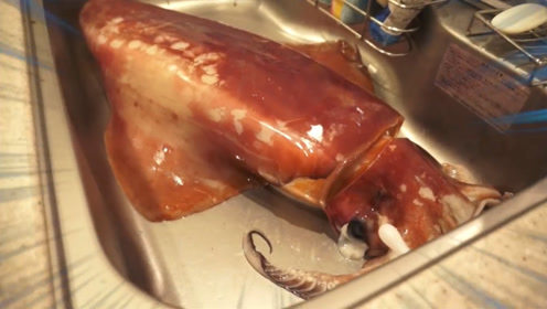 日本男子买回来一条25斤重的巨型鱿鱼,切开后,真是太惊喜了