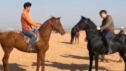 互相看了一眼,这两匹马都是暴脾气,谁也不服谁!
