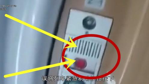 """大爷第1次坐高铁,寻找""""厕所""""按错按钮,结果火车停了!"""