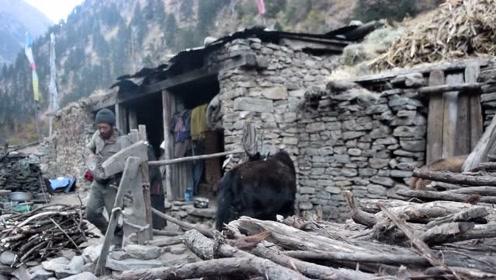 尼泊尔的贫困农村是什么样的?中国小伙深入尼泊尔进行实拍