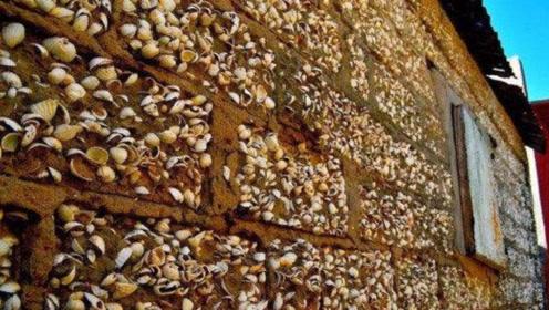 全球贝壳最多的岛:屯了300万吨贝壳,连墓地都是贝壳建造!