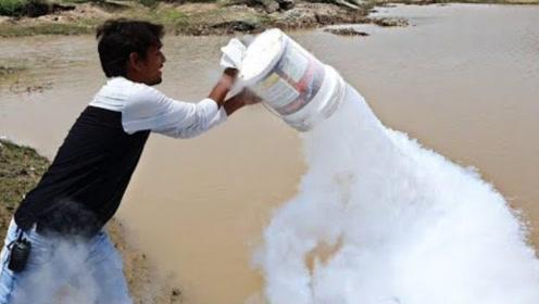 印度小哥将一大桶液氮,倒向烈日下的水塘,下一秒场面太震撼!