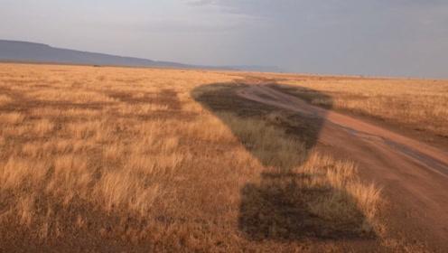 塞伦盖蒂大草原不能错过:俯瞰草原上壮观的迁徙,在天空中的自由
