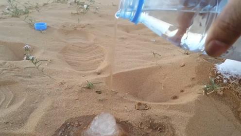 男子将一瓶水倒在沙漠上,结果水立马结成冰,网友:什么魔法?