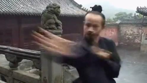武当山的陈师行道长,出拳速度到底有多快?镜头都捕捉不到