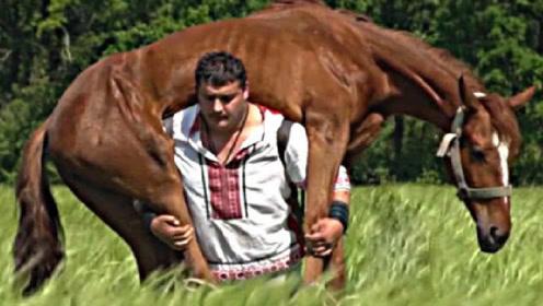 世界上最强壮的男人,打破66项世界纪录,轻松扛起一匹马