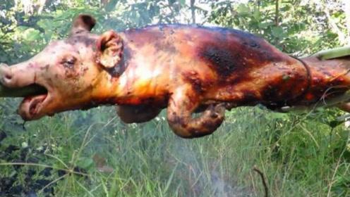"""野人大叔捕获""""山野猪"""",做成焦香烤全猪,看视频就能下饭了"""