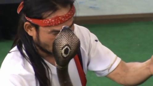 男子表演发生意外,被驯养多年的眼镜蛇咬中,镜头记录全过程!