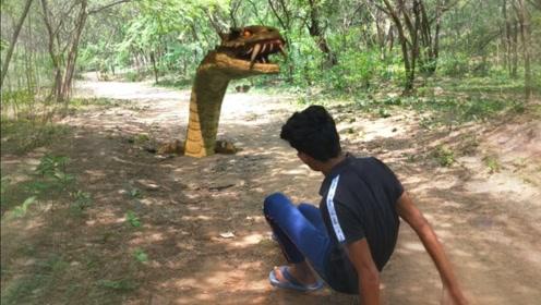 小伙在路上走着,突然前方出现一条大蟒蛇,立马撒腿就跑!