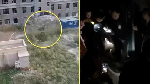 野猪闯进小区伤人,还把墙撞出洞,民警两枪击毙