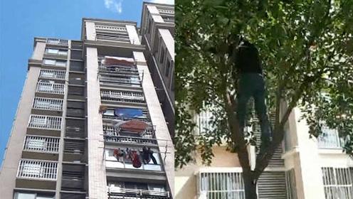 真·摇钱树!市民摇树狂掉钱,原是楼上晒被时撒下万元现金