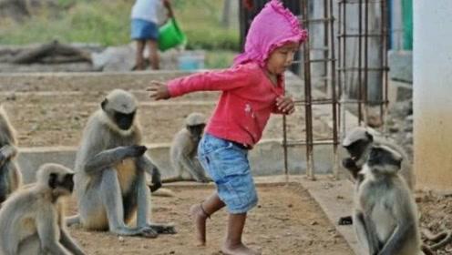 印度5岁小男孩,可以和猴子沟通,据说是受到神灵恩惠