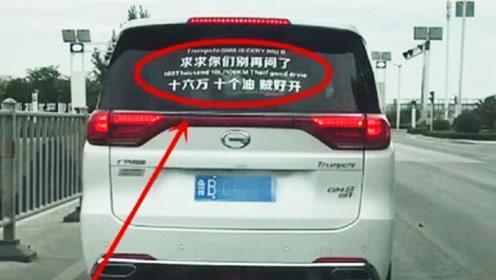 山东街头遇传祺GM8,车尾两行字太醒目,网友:厂家看到咋想?