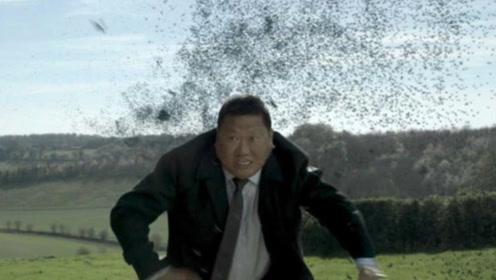 高分科幻影片,人造蜜蜂遍布全球,专杀网络喷子