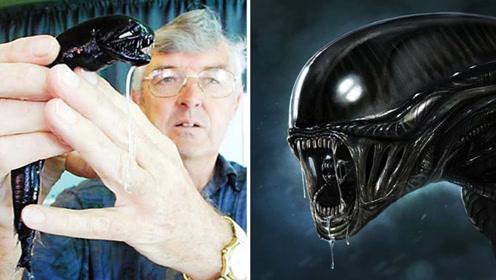 生活中真实存在的4个怪生物,科幻电影里的原型?