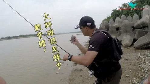 路亚钓鱼,软虫钓黑鲷鱼,我饵还没装好,钓友已经三连杆了