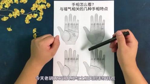 手相看你有福气吗?4种与福气相关的手相特点【老胡看相】