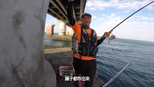 桥墩上海钓,钓鱼人收获不少靓货,这么大的泥猛少见!
