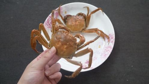大闸蟹好多人吃错了,教你正确吃法,再也不怕吃螃蟹太寒了