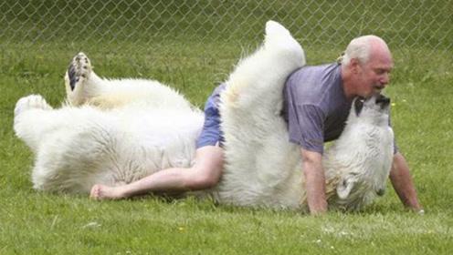 老人22年前养了只北极熊,长大后的举动让人傻眼,如今成了这样!