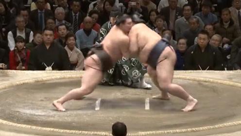 """日本最赚钱的""""铲屎官"""",帮别人擦屁股,月薪120万让你享受帝王待遇!"""