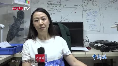 """玩骨头的研究员用短视频科普成""""网红"""""""