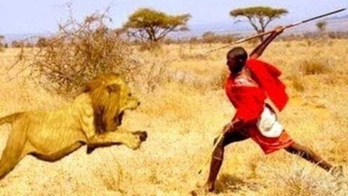 狮子为啥害怕非洲土著?看完视频你就懂了!