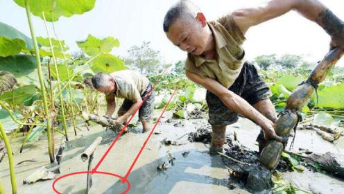 """一老汉在藕田中捡到""""奇石"""",不给几十万坚持不卖,结果悲剧了"""