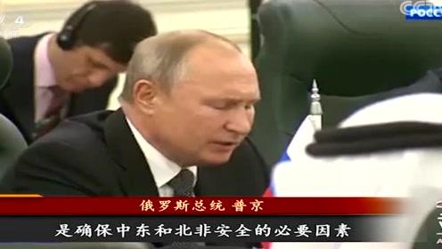 普京时隔12年再访沙特 为稳定全球石油市场签订巨额协议