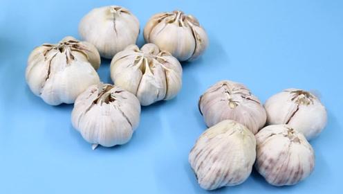如何购买优质的大蒜?记住六点,不会挑错不会买错,多亏菜贩提醒