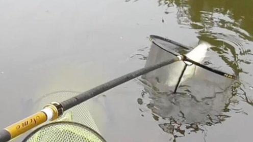 水库花30钓鱼,跟5条大鱼搏斗,小伙大汗淋漓,险切线!