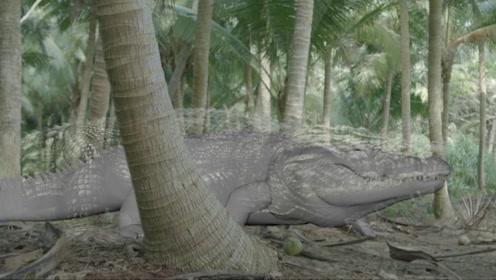特效对比大揭秘!看荒岛怪兽是如何诞生的!