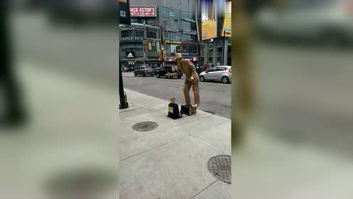 加拿大的街头表演,这一刻,在国外没点才艺连乞讨都是问题