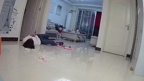 主人假装晕倒,看看二哈有什么反应