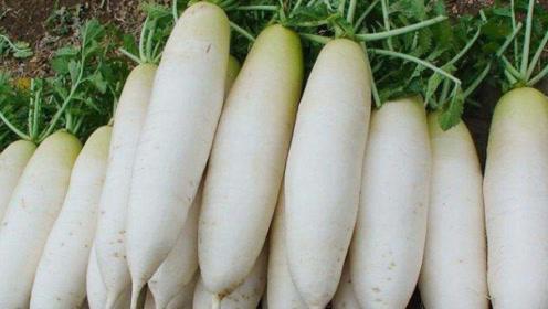 """白萝卜不能配""""它""""吃,吃了伤身体,多数人还在当补品食用!"""