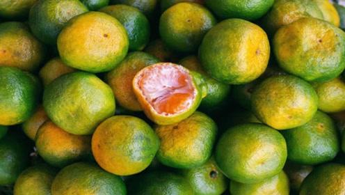 挑选橘子别只看颜色,这四个窍门教你挑选