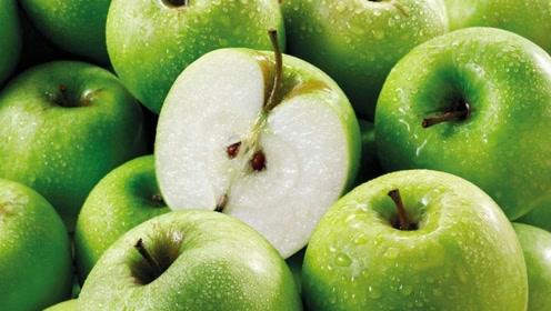 秋季常吃这些时令水果,补充维生素,促进消化,增强记忆