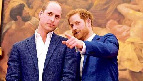哈里王子首次承认与哥哥有矛盾:我们道不同,但也还是亲哥
