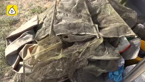 不知违法?男子抓4千只野生林蛙售卖,民警:超20只就够立案