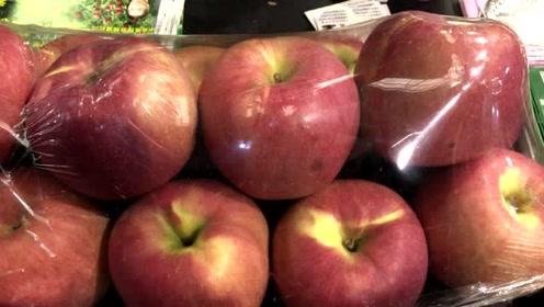 彩云逛杨凌农高会:东西太多看得眼花缭乱,这么大苹果你见过吗