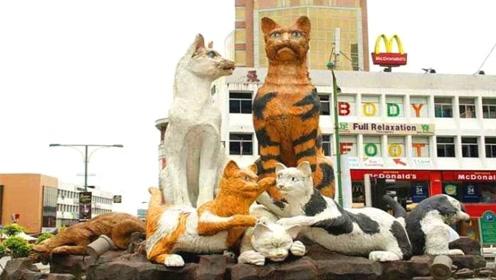 最喜爱猫的城市,到处充满猫咪元素,喜欢撸猫的别错过!