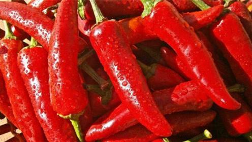 吃辣椒好处多,但对这5类人来说,吃辣相当于玩命,别不当回事!