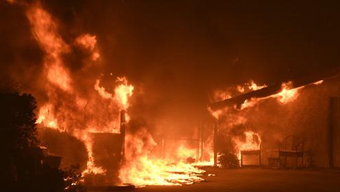 加州山火肆虐竟是因为它!起火瞬间视频曝光