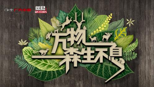 【拙见·回顾】2019广丰-城市森活节 活动回顾