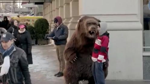 """棕熊""""越狱""""出逃,被战斗民族一脚制服,被踢到墙上还敢跑?"""