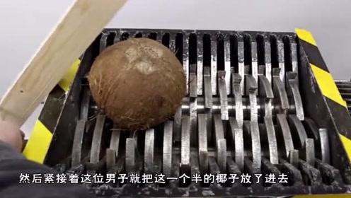粉碎万物的粉碎机,扔进完整的椰子后,到底会发生什么