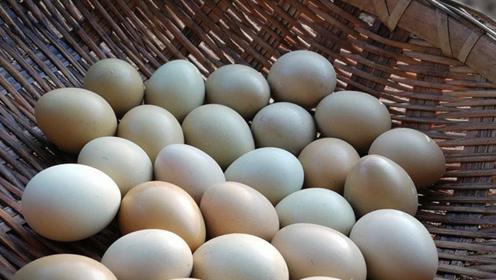 蛋壳上的鸡屎可以判断新鲜程度?能用水清洗吗?