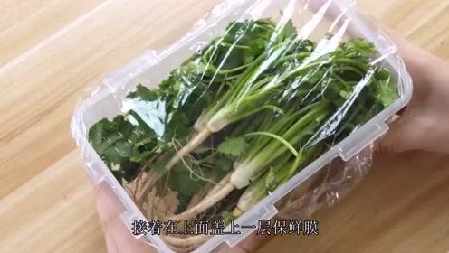 香菜别再放冰箱保存了,教你2招,一个冬天新鲜翠绿,小窍门实用