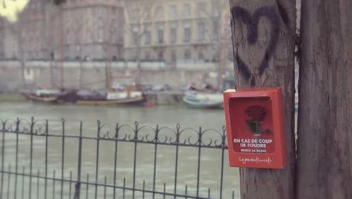 最浪漫的创意,在街头放置装有玫瑰花的盒子,让你收获爱情