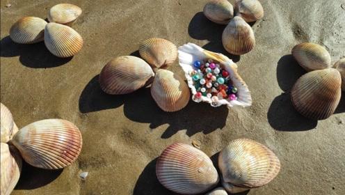 女子无意在河边捡到许多河蚌,不料打开一看,竟高兴坏了!